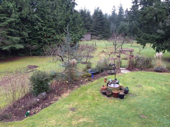 """Green Cat Guest House and B&B: Our """"room with a view"""""""