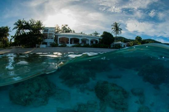 Sogod Bay Scuba Resort: The Resort and House Reef
