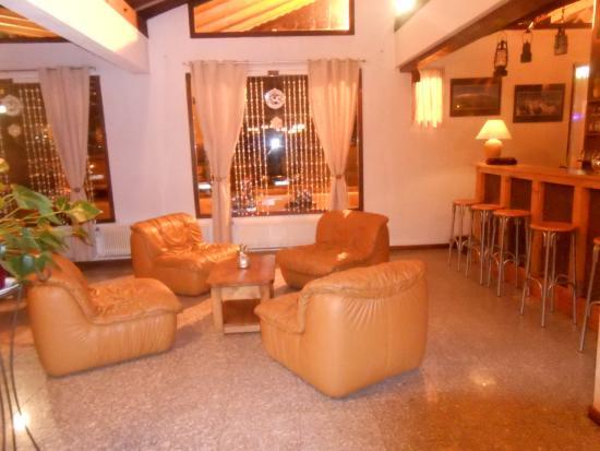 Hotel Le Carlina : Spacious Bar