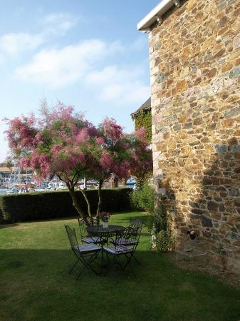 La Maison sur le Port : Front garden