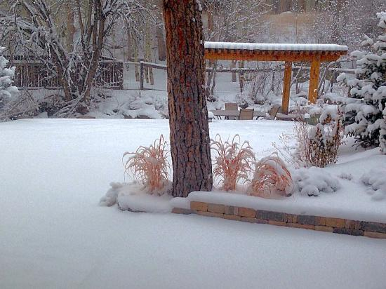 Views From Our Patio Window Picture Of The Cabins At
