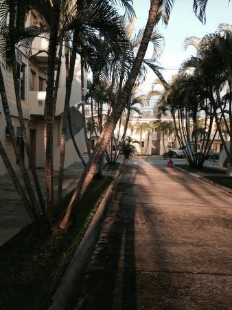 Apart Hotel Villa Nuria: View