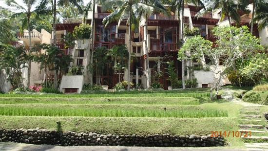 Four Seasons Resort Bali at Sayan: main hotel rooms