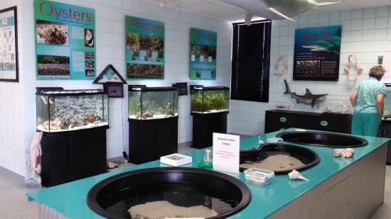 Marine Discovery Center: inside center