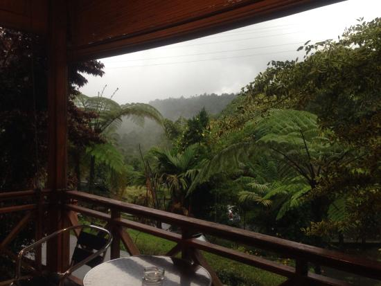 Highland Resort & Nature Tours: View dari kamar