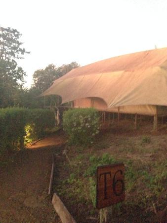Galapagos Safari Camp: No 7 our tent