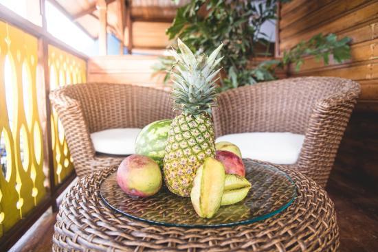 Hotel Bocas del Toro : Tropical Fruits