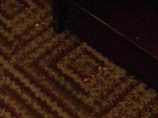 La Quinta Inn & Suites Columbia Jessup : Clean floor