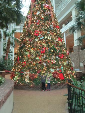 Opryland Christmas.Giant Christmas Tree Picture Of Gaylord Opryland Resort