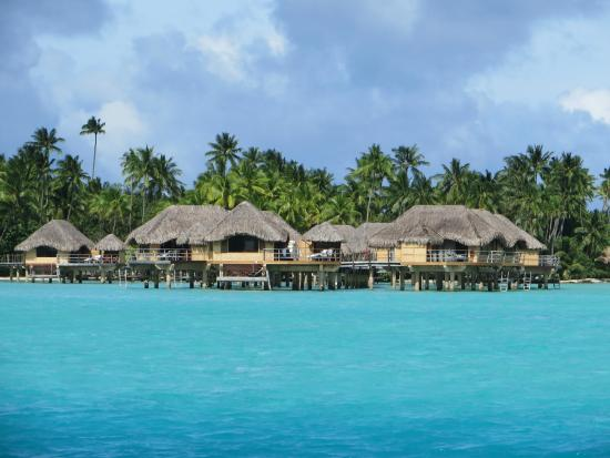 Le Taha'a Island Resort & Spa: View of Bungalows from approaching boat