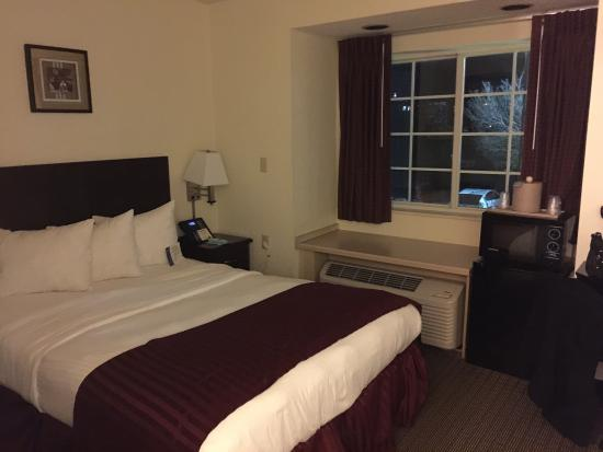 Jacksonville Plaza Hotel & Suites: The room