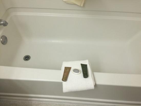 Jacksonville Plaza Hotel & Suites: Bathroom