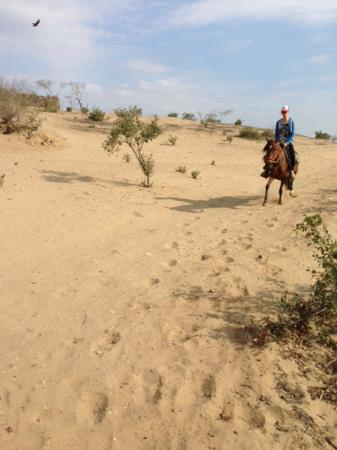 Horseback riding Rancho Santana: riding