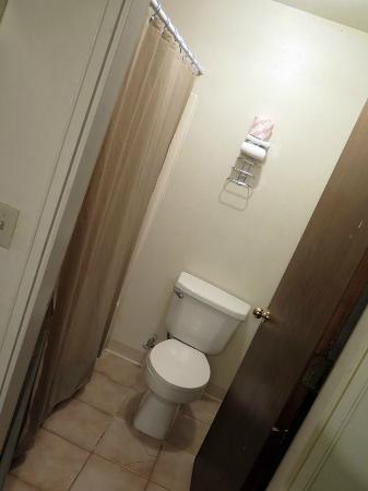 Clown Motel: Bathroom