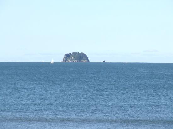 Waterfront Apartments : Whitianga: Blissful view.