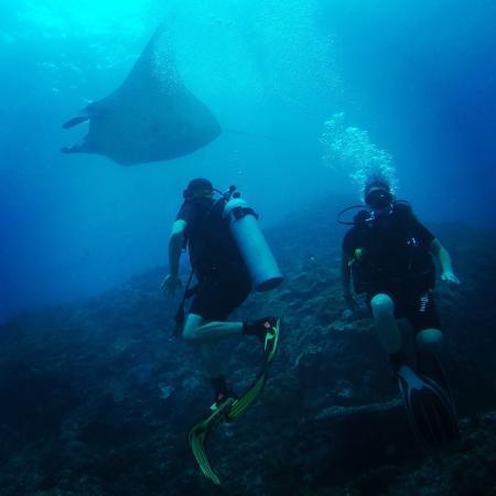 Bali Scuba Masters: Nusa Penida - Manta Point