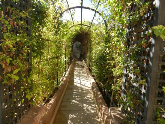 fotos jardins internos:jardines internos – Foto di Les Jardins de La Koutoubia, Marrakech