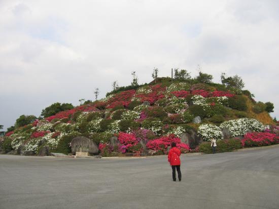 Tsutsuji Eco Park