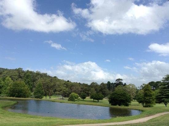 Gibraltar Hotel Bowral : Our wonderful view from Room 110