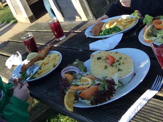 Rugglestone Inn: Fish pie and two kids fish & chips