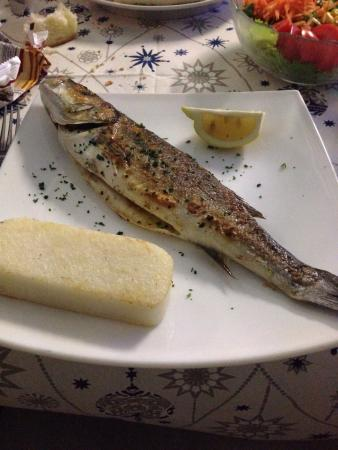Trattoria Al Pescatore Cucina Tipica Del Pesce : Branzino 👍