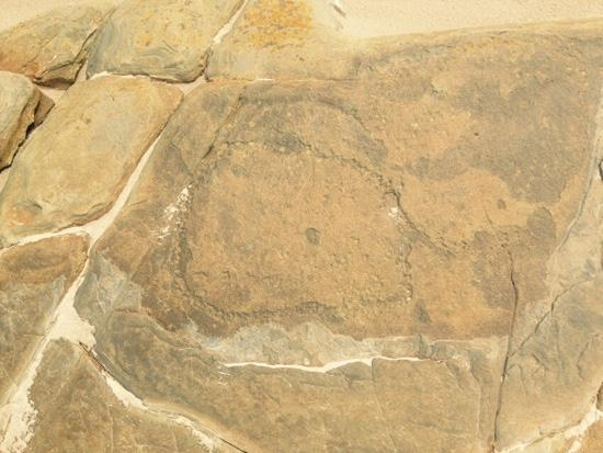 Tall Timbers Tasmania : Aboriginal art on the beach
