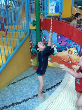 Sydney International Aquatic and Athletic Centres: Pull the rope for water