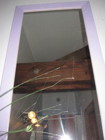 Chambres d'hotes - Le Jardin de la Forge: toiles d'araignées!