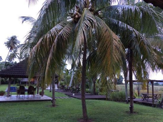 Nam at Bon Ton: Blick von der Terrasse