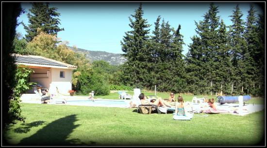 Le Mas des Hirondelles: la piscine au pied des Monts de Vaucluse