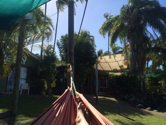 Backpackers by the Bay: Relaxing in one of the hammocks