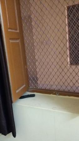 Hotel Roop Mahal: deluxe room - window view