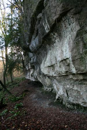 South Yorkshire, UK: North Cliff
