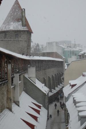 Hellemann Tower: The view from Helleman Tower in a snowy day