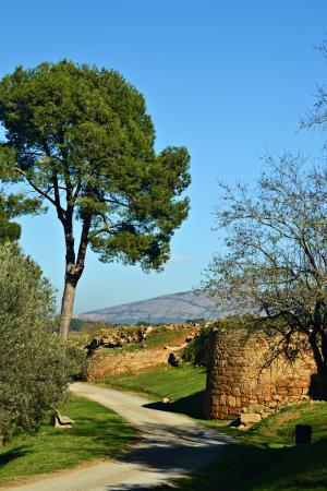 Museo Arqueológico de Cataluña-Ullastret: Parte de la muralla