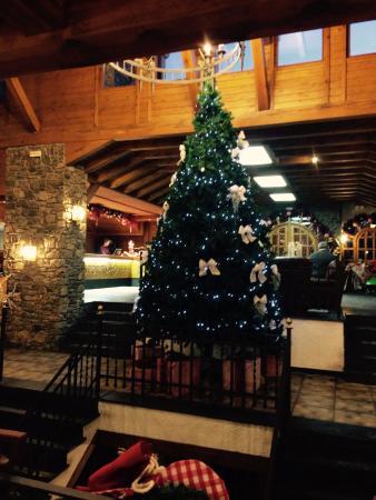 Sport Hotel : Christmas tree