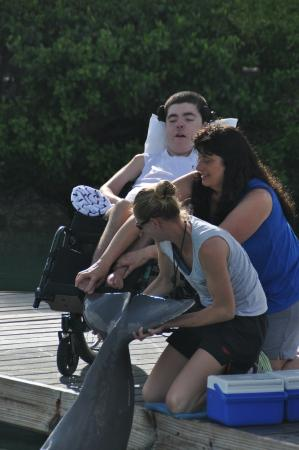 Dolphin Connection : Handicap Friendly!!