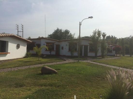 Casa Hacienda Nasca Oasis: Camino a las habitaciones