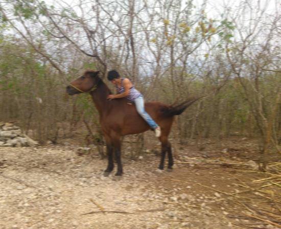 Hotel Hacienda Noc Ac: horse and me