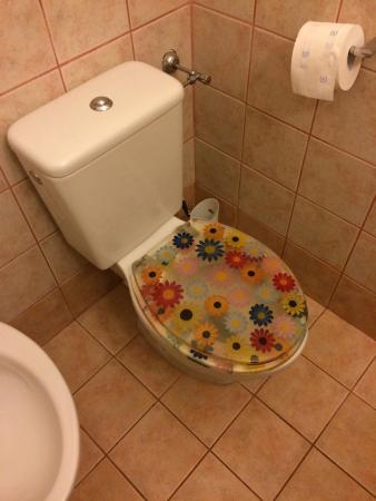 Bed & Breakfast Villa Sans Souci: questo e' un bagno che costa 10 euro in piu a notte