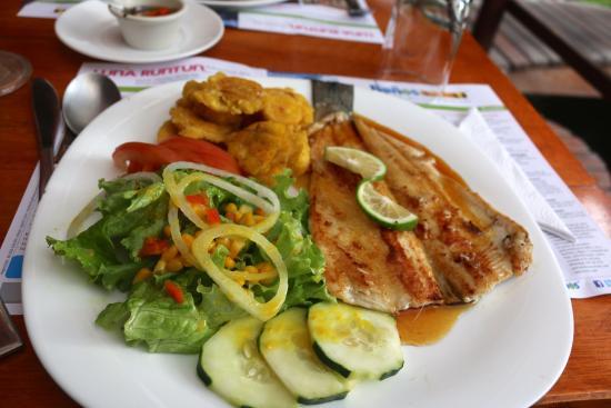 Baño Discapacitados Traduccion:Orange Trout paired with fresh tomatoes and salad: fotografía de El