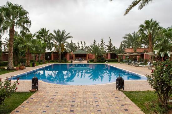 Hotel Le Riad: Pool area