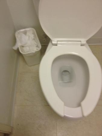 Extended Stay America - Orlando - Maitland - Summit Tower Blvd: Uncleaned environment