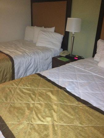 Extended Stay America - Orlando - Maitland - Summit Tower Blvd: Bedroom