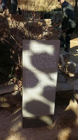 Jeondeungsa Temple : 대웅전 설명