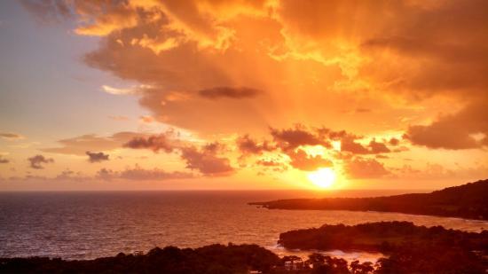 bruno max picture of caribbean dawn port antonio tripadvisor