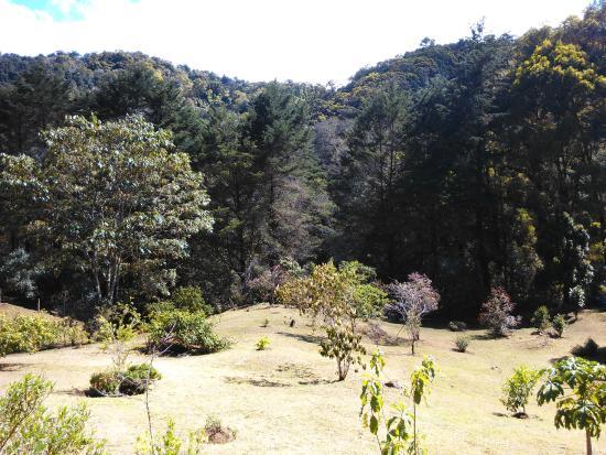 Hotel de Montaña y Restaurante Suria: Vista de Montaña