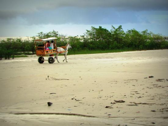 Algodoal Island: Ilha de Algodoal
