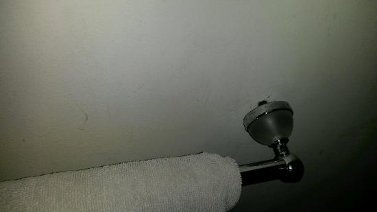 Ecosfera Hotel: Badezimmer Fragiler Handtuchhalter