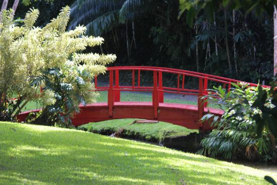 Jardin Botanico: red bridge